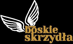 Logo-bs-BIEL